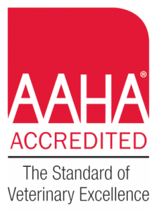 AAHA Accredited Cornerstone Animal Hospital